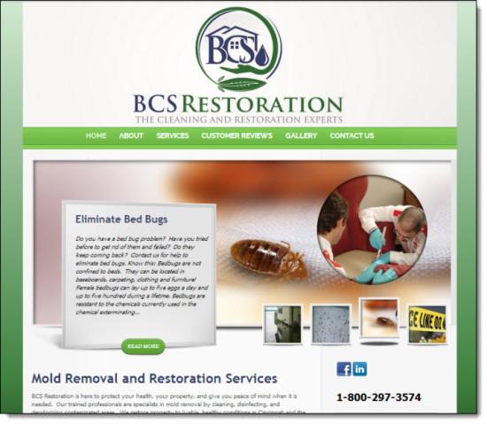 BCS Website