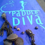 Online Marketing Case Study: Paddle Diva